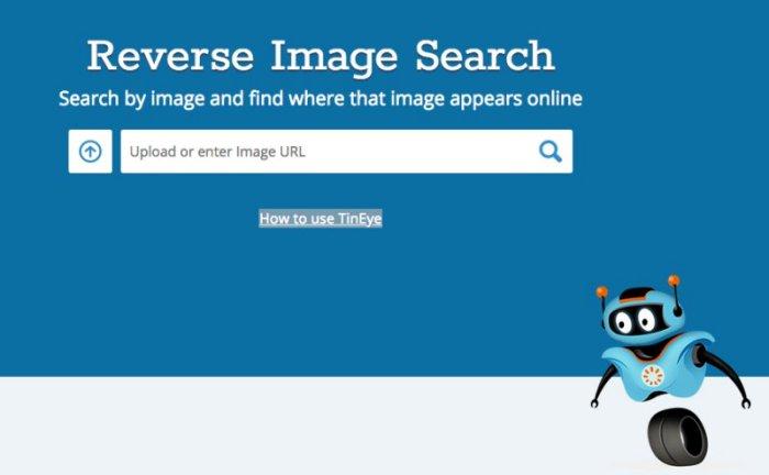 Vyhledávač obrázků TinEye.