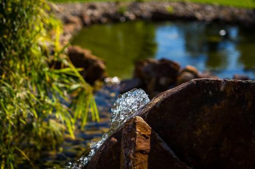 Detail vodotrysku zahradního jezírka.